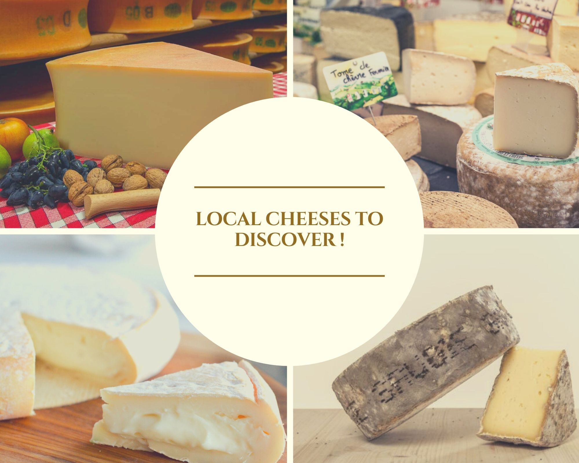 Local cheeses to discover